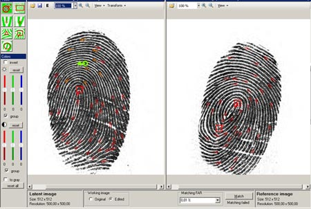 afis automated fingerprint identification systems allows Automated fingerprint identification systems are primarily used by law  the pruem treaty's decentral infrastructure allows afis queries on all european.